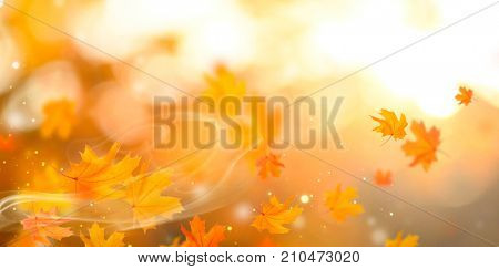Autumn background. Fall Abstract autumnal background with colorful leaves and sun flares, flying on wind colorful bright leaves, yellow, orange and red colors backdrop. Abstract art design.
