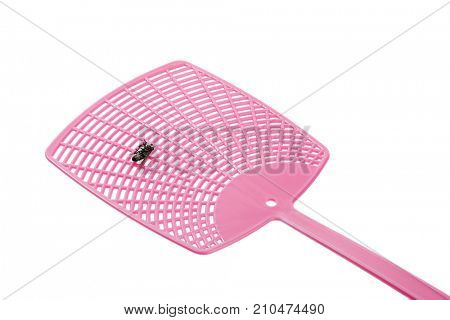 Single pink flyswatter with fly on it isolated on white background.