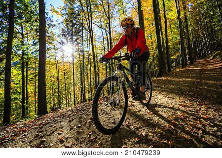 Cycling woman on cycle trail in autumn forest. Mountain biking in autumn landscape forest. Woman cycling  uphill trail.