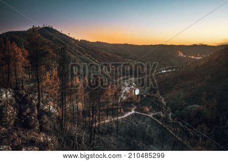Burnt landscape of Portuguese forests after the wild fires in the summer of 2017