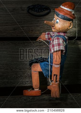 Traditional puppets made of wood..These items are a collection of my own.