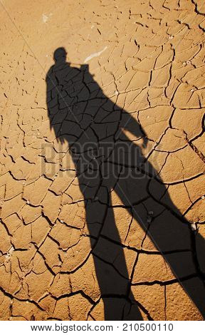 Silhouette of man over cracked drought land, result of global warming