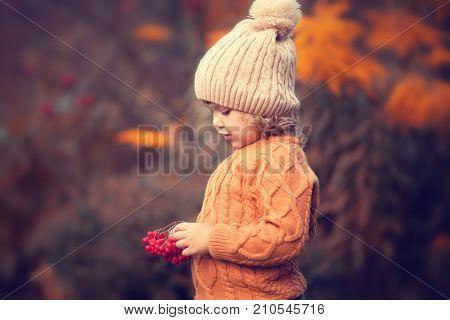 Cute toddler girl wearing sweater knitted hat and scarf holding rowanberry. Fall red and yellow leaves toned photo.