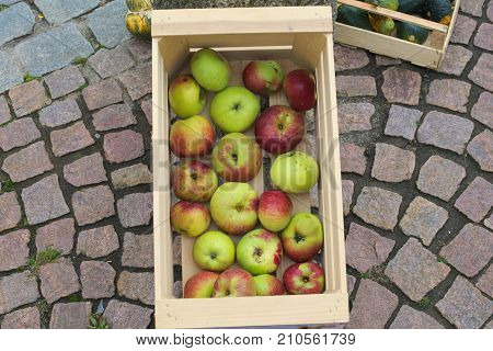 a basket with fresh apples on the ground
