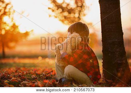 Adorable Little Boy With Teddy Bear In The Park On An Autumn Day