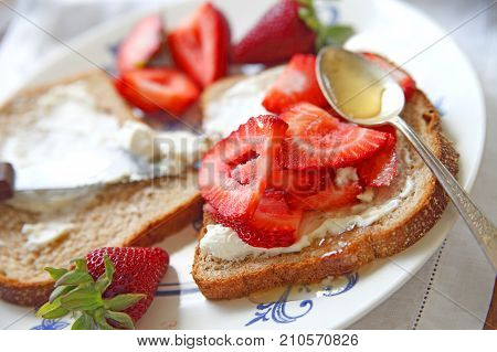 Fresh strawberries and cream cheese on wheat bread with honey