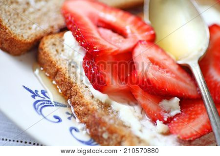 Ripe strawberries with cream cheese and honey on wheat bread