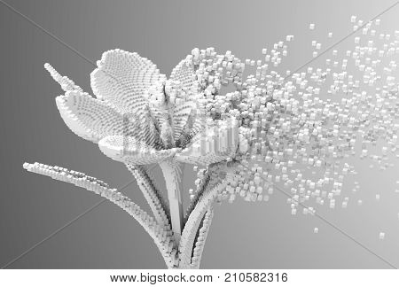 Digital Flower Disintegrates To 3D Pixels. 3D Illustration.