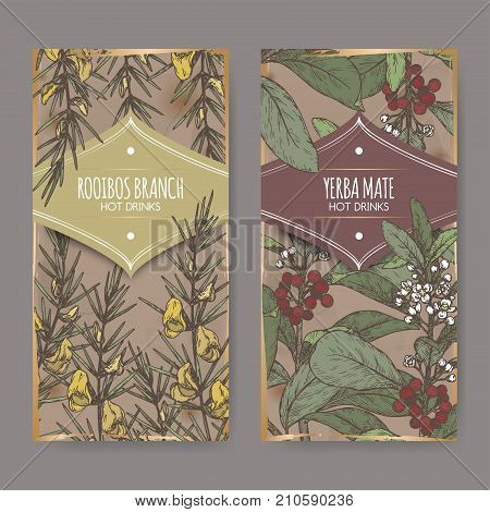 Set of two color labels with Rooibos aka Aspalathus linearis and Yerba mate aka Ilex paraguariensis branches with leaves and flowers. Hot drinks collection. Great for cafe, bars, tea ads.