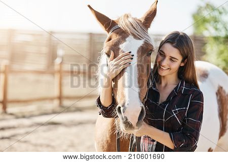 Young beautiful girl petting a horse taking care preparing to become a barn manager at an animal farm.