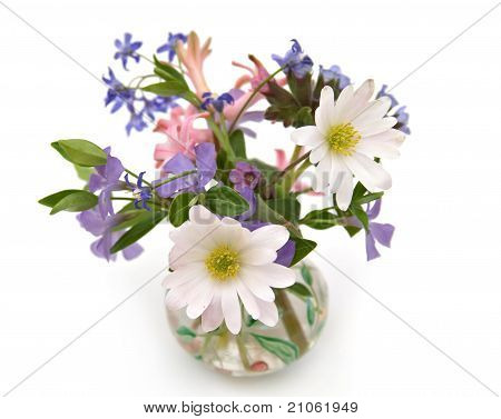 Miniature Flowers