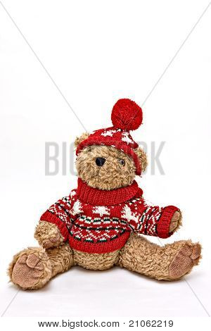 Winter Sweater Bear