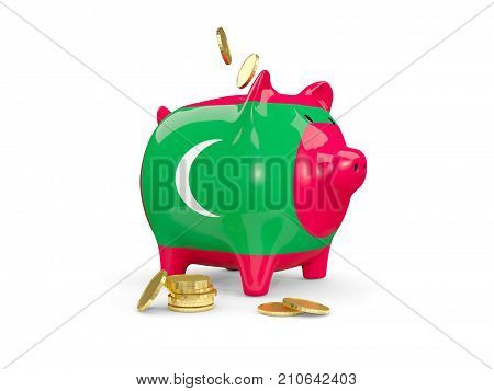 Fat Piggy Bank With Fag Of Maldives