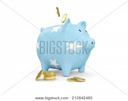 Fat Piggy Bank With Fag Of Micronesia