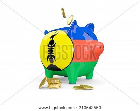 Fat Piggy Bank With Fag Of New Caledonia