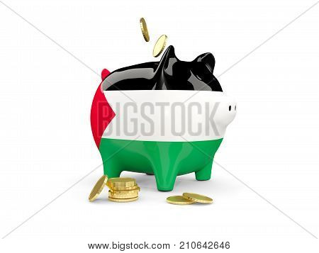 Fat Piggy Bank With Fag Of Palestinian Territory