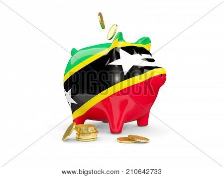 Fat Piggy Bank With Fag Of Saint Kitts And Nevis