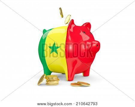 Fat Piggy Bank With Fag Of Senegal