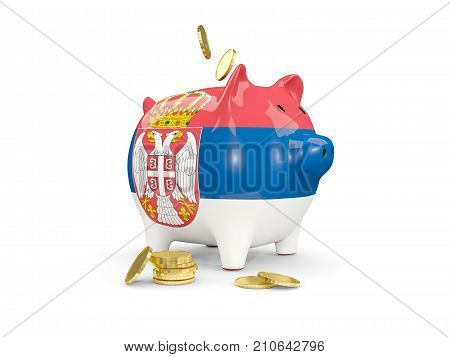 Fat Piggy Bank With Fag Of Serbia