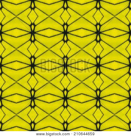 Background Created From Part Of Butterfly Wings