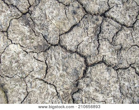 full frame dry fissured soil structure seen from above