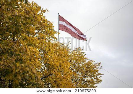 Big Latvian flag in the park autumn