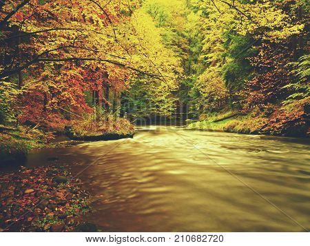 Autumn Mountain River With Low Level Of Water, Fresh Green Mossy Stones And Boulders On River Bank