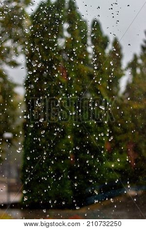 Rain drops fall continuously with blur green nature background.