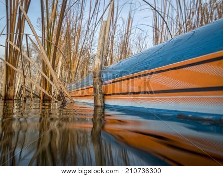 Stand up paddleboard and reeds on a calm lake, fall scenery with a low angle view