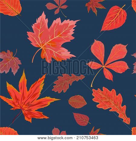 Vector Seamless Autumn fall season patten background floral watercolor style with colorful falling red orange leaves of forest maple chestnut tree. Decorative beautiful print on navy blue background