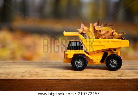 A Small Toy Yellow Truck Is Loaded With Yellow Fallen Leaves. The Car Stands On A Wooden Surface Aga