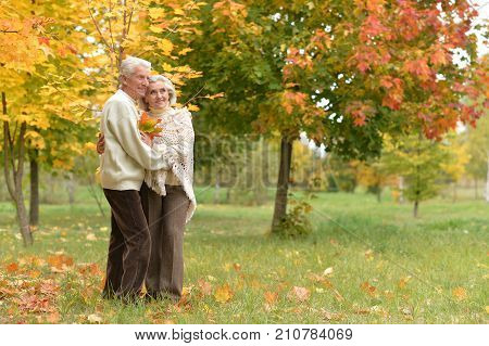 portrait of beautiful caucasian senior couple with leaves  in the park