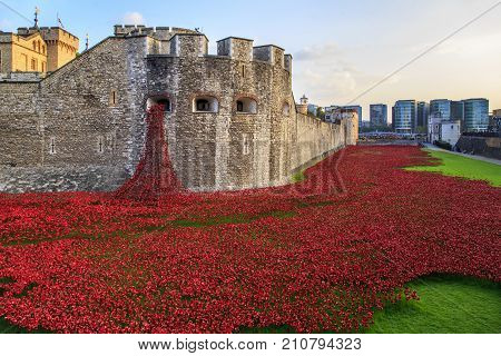 LONDON, GREAT BRITAIN - SEPTEMBER 21, 2014: This is an installation of ceramic red poppies in memory of those killed in the First World War in the moat of the Tower of London.