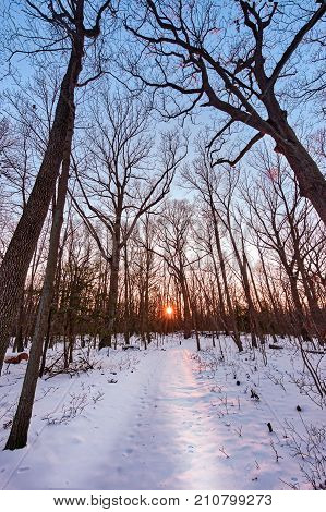 Winter scene of a snow covered hiking trail through the woods towards a sunset on the horizon