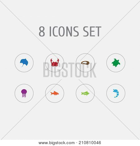 Collection Of Tortoise, Tunny, Lobster And Other Elements.  Set Of 8 Food Icons Set.