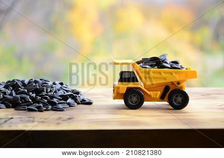 A Small Yellow Toy Truck Is Loaded With Sunflower Seeds Next To A Small Pile Of Sunflower Seeds. A C