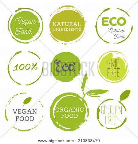 Healthy food icons labels. Organic tags. Natural product elements. Logo for vegetarian restaurant menu. Raster illustration. Low fat stamp. Eco product.