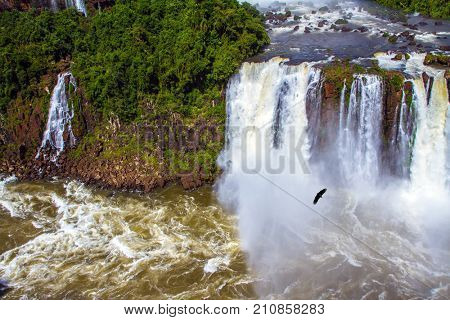 In the water dust Andes condors fly. Most abounding in water Iguazu Falls in the world. Border of Argentina, Brazil and Paraguay. Concept of active and extreme tourism
