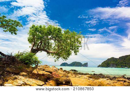 Island Lagoon Green Getaway