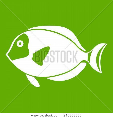 Surgeon fish icon white isolated on green background. Vector illustration