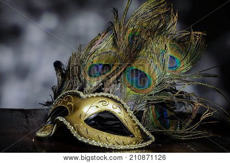 Carnival Venetian Mask With Peacock Feathers On Dark Background