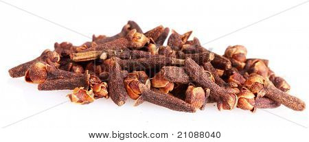 spice clove isolated on white