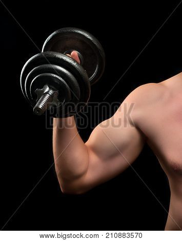 Biceps Beginner Bodybuilder