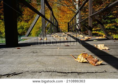 Wooden bridge in bright sunny autumn day with some fallen leaves low level shot with copy space