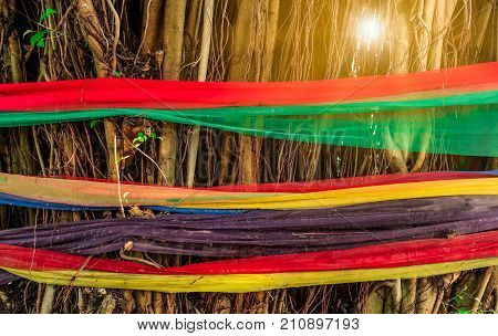 Five colors fabric wrap around the tree with flare light. The belief of Thai people. Ways to Protect the Environment. Protect trees from being cut.