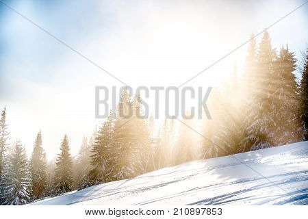 Cold Snowy Mountains, European Background Snowy Forest, Winter Mountain Slope, Beautiful Cold Winter Landscape, Concept Winter Landscape, Snowy Forest, Symbol Winter Landscape, Lomo Cold Landscape