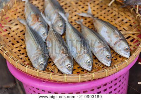 Dried Mackerel Fish On Bamboo Threshing Basket For Sea Food Preservation