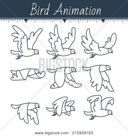 Animation The Bird Is Flying