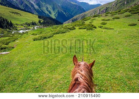 View To Steep Path From The Horse Back, Kyrgyzstan