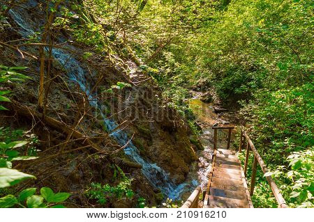 Waterfall thicket and wooden stairs in the park Berendeyevo Tsarstvo in sunny summer day Sochi Russia